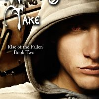 Review: Your Soul to Take by Sean Hayden