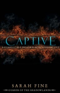 Book Cover for Captive by Sarah Fine