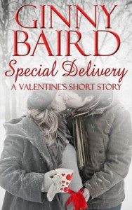 "Book Cover for ""Special Delivery (A Valentine's Short Story)"" by Ginny Baird"