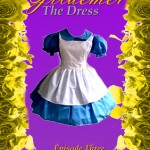 "Book Cover for ""Gildemer: The Dress"" by A.S. Oren"