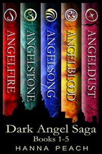"Book Cover for ""Dark Angel Box Set"" by Hanna Peach"
