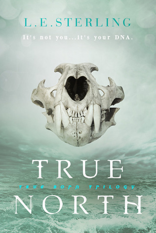 True North by L.E. Sterling