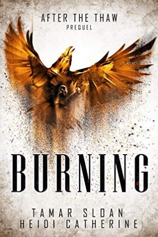 Review: Burning by Tamar Sloan and Heidi Catherine