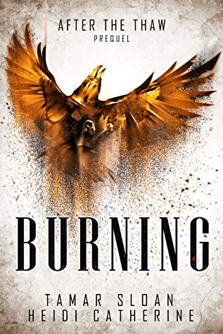 Burning by Tamar Sloan, Heidi Catherine