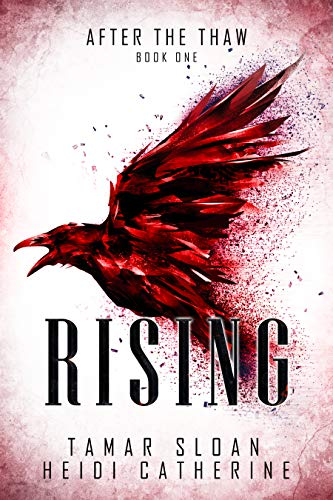 "Book Cover for ""Rising"" by Tamar Sloan and Heidi Catherine"